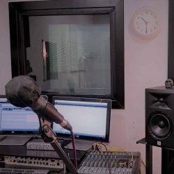 Micrófono protegido con funda individual